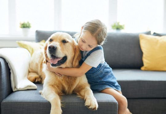A dog and girl sitting on a sofa